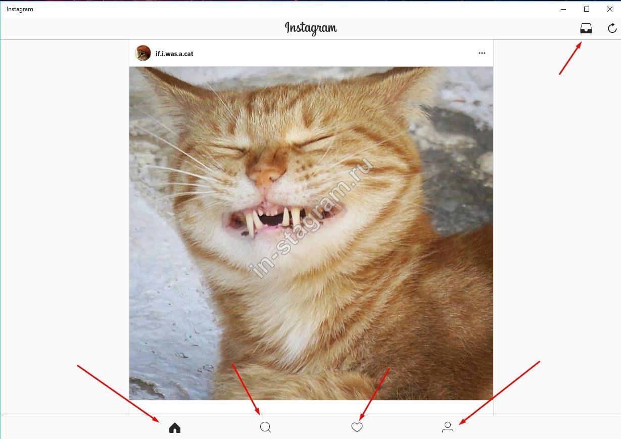 Стартовая страница Instagram на Windows 10